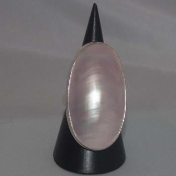 Ring Nautilus Muschel, 925 Silber