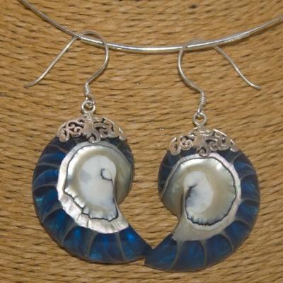 Ohrhänger Nautilus Muschel, blau, 925 Silber