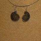 Ohrhänger Ammonit, 925 Silber